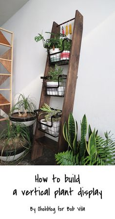 Plant ladder shelf lite a space saving solution for any indoor garden plant stand Plant Ladder, Diy Ladder, Ladder Decor, Garden Plant Stand, Diy Plant Stand, Plant Stands, Plant Pots, Plant Table, Diy Wall Decor