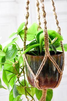 Outdoor Pots, Indoor Outdoor, Indoor Planters, Planter Pots, Contemporary Planters, Hanging Pots, Water Features, Houseplants, Plant Hanger