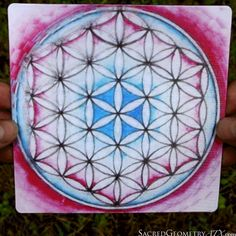 Sacred Geometry ATX | The Artwork of Ansel Bickerton