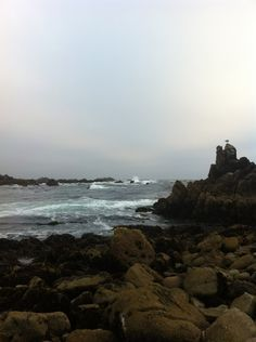 City of Pacific Grove