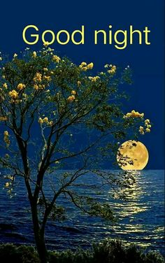 I agreed with you 🌹🌹 Thanks for your beautiful message as well, wishing you a lovely evening there and good night ahead my friend, sweet dreams 💜. Moon Pictures, Nature Pictures, Beautiful Pictures, Beautiful Nature Wallpaper, Beautiful Moon, Image Nature, Shoot The Moon, Moon Photography, Good Night Image