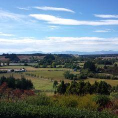 Upper Moutere. Nelson