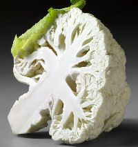 How to Grow Cauliflower http://www.vegetable-garden-guide.com/how-to-grow-cauliflower.html