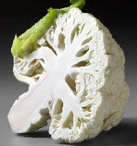 How to Grow Cauliflower http://www.vegetable-garden-guide.com/how-to-grow-cauliflower.html