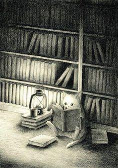 Illustration: Cat seated on library floor reading books by lantern light. I Love Books, Good Books, Books To Read, I Love Cats, Crazy Cats, Book Illustration, Illustrations, Cat Reading, Reading Books