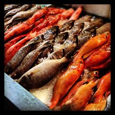 Day #105 - shimmering fresh fish in Brixton Village's Market Row