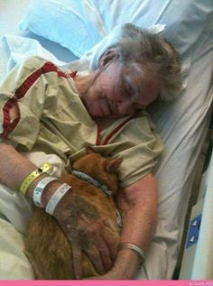 The Hospital allowed this lady's cat to visit her during her last day's on earth! Those nurses were hero angels!  What a compassionate, kind group of caregivers!  Way to go!