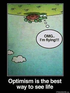 Optimism 😂