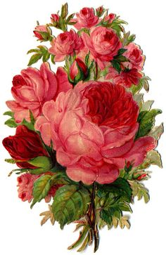 vintage material - Flower vol.3 | Flickr - Photo Sharing!