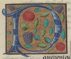 Français 5748 Publication date :  1501-1600 Type :  manuscript Language :  french