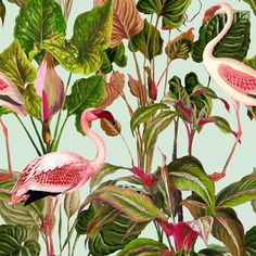 Beverly Hills set of 3 panels by Mind the Gap - Mint : Wallpaper Direct Pink Flamingo Wallpaper, Mint Wallpaper, Tropical Wallpaper, Modern Wallpaper, Wallpaper Samples, Pattern Wallpaper, Amazing Wallpaper, Wallpaper Online, Designer Wallpaper