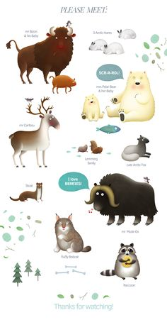 Animals of North America bundle:          This bundle is dedicated to animals of North America. Polar Bear, Bizon, Caribou, Bobcat, Arctic Fox and others are waiting to become a part of your design!