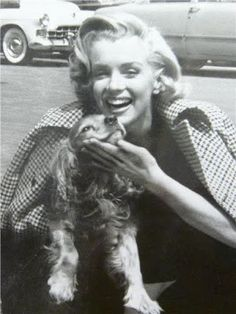 Marilyn Monroe and her Cocker Spaniel Spaniel Puppies, Cocker Spaniel, King Charles Spaniel, Cavalier King Charles, Golden Age Of Hollywood, In Hollywood, John F. Kennedy, Marilyn Monroe Fotos, Puppy Mix