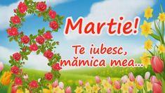 Felicitări De 8 Martie. Cele Mai Frumoase Mesaje şi Urări De 8 Martie | Libertatea 8 Martie, The Creator, Mai, English Vocabulary, Youtube, Plants, Youtubers, Youtube Movies