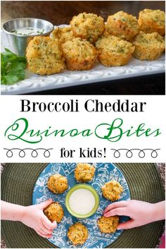 This tot-sized broccoli cheddar quinoa bites recipe is packed with nutrients and the perfect size for little hands.