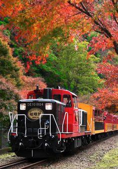 京都嵯峨野トロッコ列車 《Kyoto Sagano Truck Train and the foliage in the west during Autumn, Kyoto Japan Hobby Trains, Old Trains, Train Tracks, Train Rides, Train Tour, Railroad Photography, Train Art, Autumn Scenery, Rolling Stock