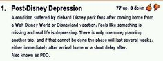 PDD, post disney depression. And then you get home and you can't focus in school because your mind is still in Disneyland. Mehe.