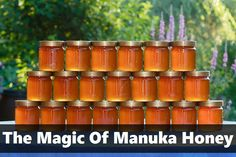 Can diabetics eat honey? We can definitively say that diabetics can safely include honey in a diabetes meal plan – up to a point. Check the article out! Natural Home Remedies, Natural Healing, Herbal Remedies, Health Remedies, Natural Medicine, Herbal Medicine, Health And Beauty, Health And Wellness, Manuka Honey Benefits