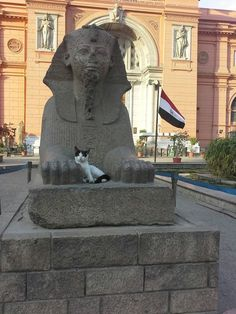 The Sphinx Statue of King Thotmoses III integrating with Cat, the symbol of goddess Bastat by Mohamed Badry