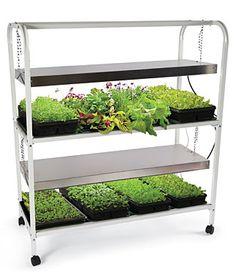 Deluxe Glow N Grow Light Garden, Gardening Supplies and Garden Tools at Burpee.com