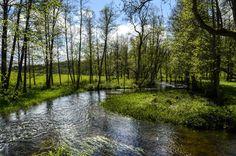 Fiskars - Finland -Fiskars