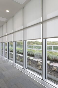 Light-filtering roller shades would be a HUGE improvement from the vertical blinds! Huge Windows, Blinds For Windows, Window Curtains, Office Blinds, Motorized Shades, Motorized Blinds, White Blinds, Solar Shades, Custom Window Treatments