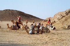 Bedouin people.