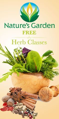 Free Herb Classes by Natures Garden.  Learn how to use herbs in cosmetics and soap.  Learn about the medicinal values of herbs.  #herbclasses