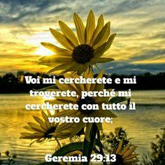 http://bible.com/123/jer.29.13.NR94
