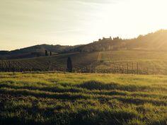 The view of Colognole castle from Viticcio