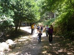 Trekking Macchia dell'Inferno -Discovery Madonie