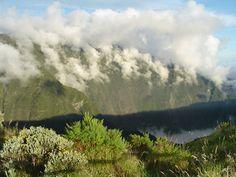Reunion Island, 2005