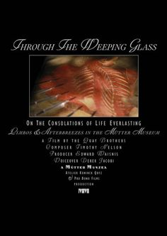 """""""Through the Weeping Glass"""" by The Brothers Quay DVD (Mutter Museum)"""