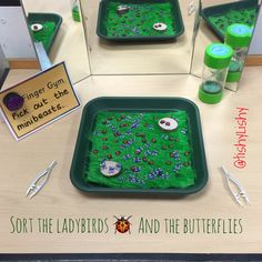 Finger Gym - sorting tiny ladybirds and butterflies