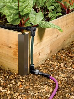 Deluxe Micro Snip-n-Drip Irrigation Kit with Stakes | Gardeners.com