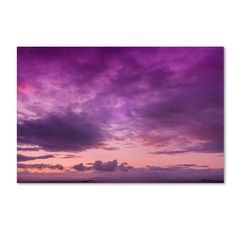 Fool in Love by Philippe Sainte-Laudy Photographic Print on Wrapped Canvas