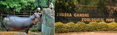 Indira Gandhi Zoological Park is located within the Kambala konda Reserve forest in Visakhapatnam. In the year 1977, the park was opened for public. The park is spread across an area of 625 hectares amidst the Eastern Ghats Mountains, which looks absolutely scenic and picturesque.