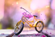Thank u for your comments & likes Tilt Shift Photography, Bokeh Photography, Medium Format Camera, Camera Movements, Out Of Focus, Tricycle, Dreaming Of You, Miniatures, Adventure