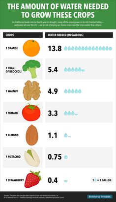 Infographic : How Much Water It Takes To Grow Some Common Crops How Much Water It Takes To Grow Some Common Crops By Information graphics, Plant Growth, Plant Care, Water Garden, Garden Plants, California Drought, Information Graphics, Data Science, Data Visualization, Need To Know