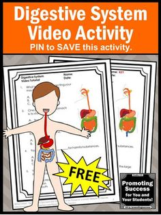 This FREE printable digestive system science worksheet and video will supplement your teaching human body systems unit for kids in 4th, 5th, 6th and 7th grade. These biology activities also work well for middle school and special education students. You may also purchase a foldable interactive notebook project for kids.