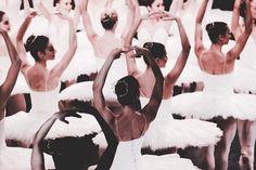 "yoiness: "" Artists of The Australian Ballet. Photography Kate Longley © School of American Ballet "" Shall We Dance, Just Dance, Dance Photos, Dance Pictures, Australian Ballet, Pretty Ballerinas, Ballet Photography, White Photography, Ballet Beautiful"