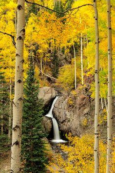 Nellie Creek Falls,King County, Washington  by David Kingham