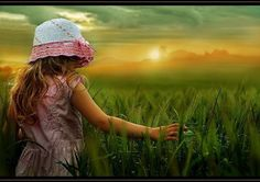 In the fields - Pixdaus