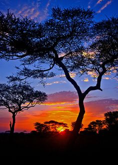 African Sunrise | Flickr - Photo Sharing!