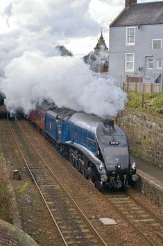 By Train, Train Car, Train Tracks, Train Rides, Electric Locomotive, Diesel Locomotive, Steam Locomotive, Steam Trains Uk, Rail Transport