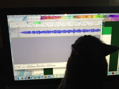 Capolina helping edit a Celtic recording #meow #angelicstrings