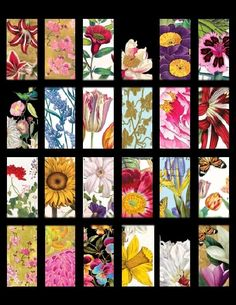 """Fabulous Flowers #3 - 1""""x2"""" Images Domino Collage Sheet Laser Print BEST SELLER 