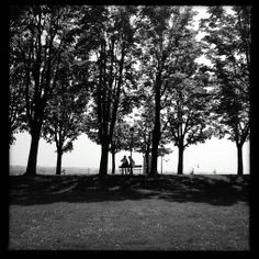 Primavera. Mura venete di Bergamo - foto di Luigi Donadio --- Questa fotografia partecipa al Concorso Fotografico Bergamo, per votarla condividila dalla pagina Facebook http://on.fb.me/1bfzk4E (la trovi tra i post di altri) e carica anche tu le tue foto su www.orobie.it per partecipare al concorso!