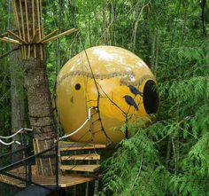 Welcome to the world of Free Spirit Spheres, set among the tall trees of the west coast rainforest of Vancouver Island, Canada. Built on vision and engineering these handcrafted spheres are suspended like pendants from a web of rope. They occupy a truly unique place in the world while providing a habitat for the un-tamed spirit that exists in us all.