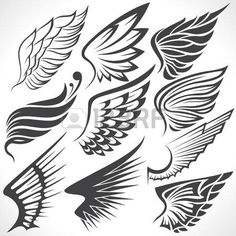 Illustration of The Vector image of Big Set sketches of wings vector art, clipart and stock vectors. Rose Drawing Tattoo, Wings Drawing, Wing Tattoo Designs, Angel Tattoo Designs, Edm Tattoo, Hermes Tattoo, Tribal Wings, Jaguar Tattoo, Wings Icon